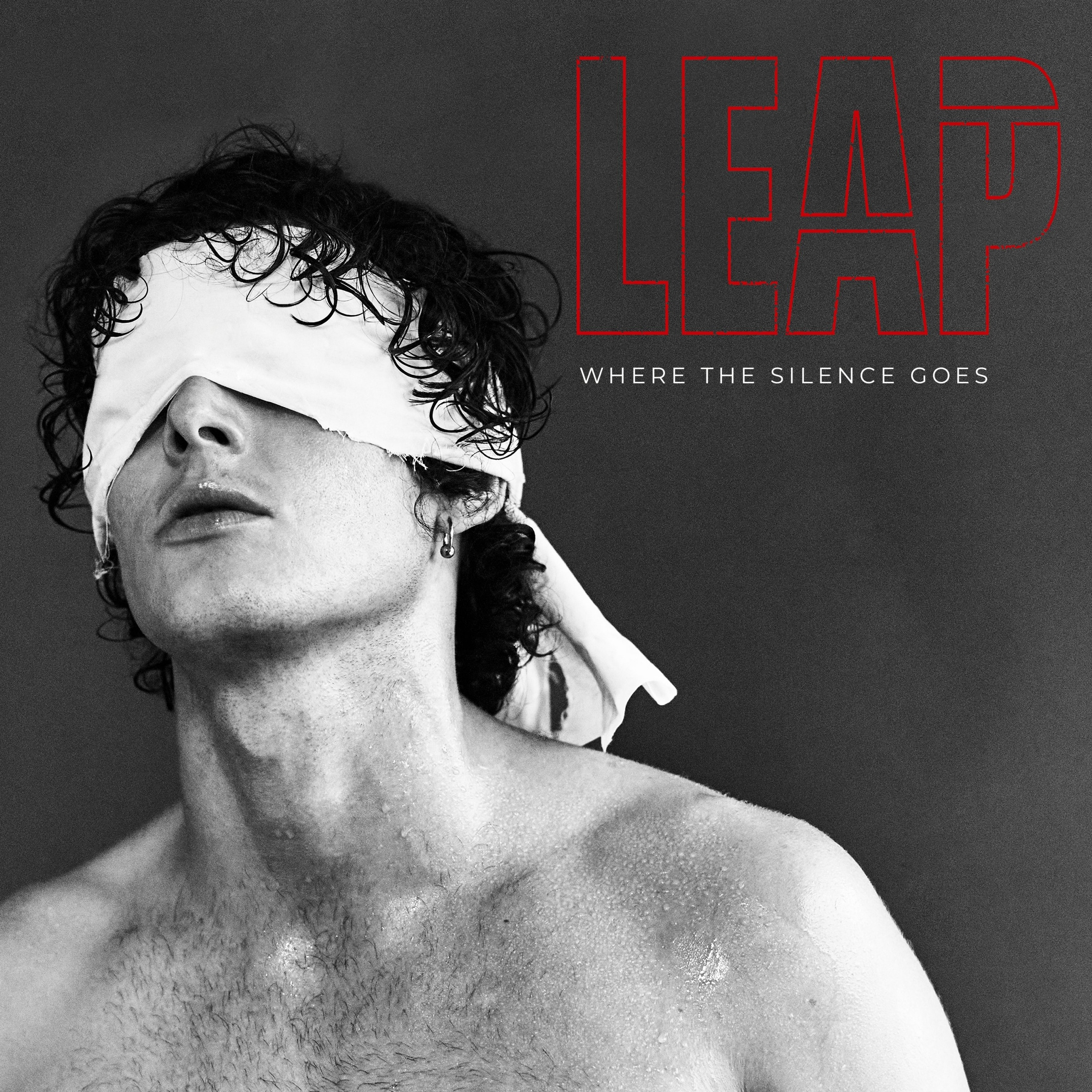 LEAP Where The Silence Goes artwork