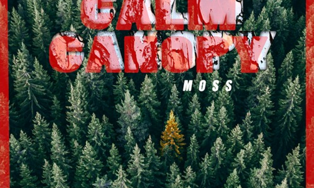 Calm-Canopy-Moss-artwork.jpg