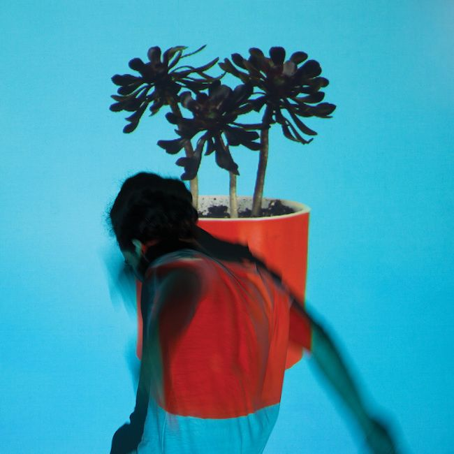 Local_Natives_Sunlit_youth_300.jpg