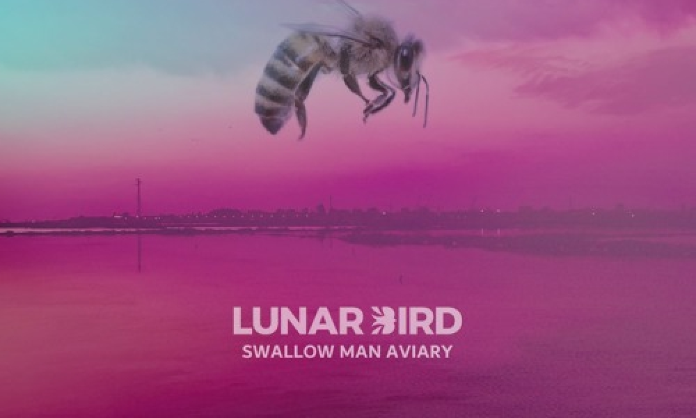 Lunar-Bird-Swallow-Man-Aviary-artwork.jpg