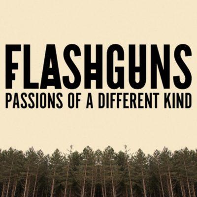flashguns-album-cover-artwork.jpg