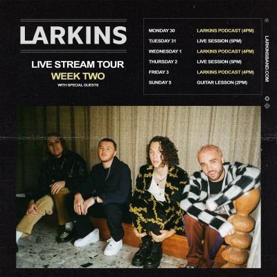 larkins-live-stream.jpeg