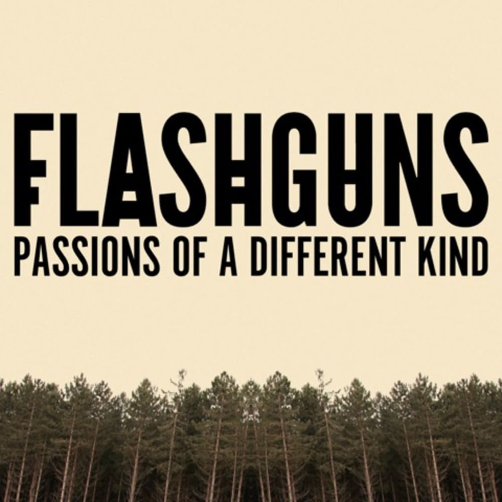 flashguns album cover artwork